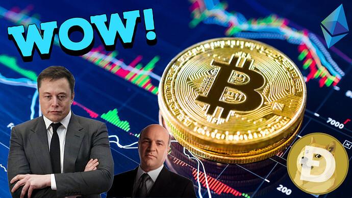 CryptoNewsMay